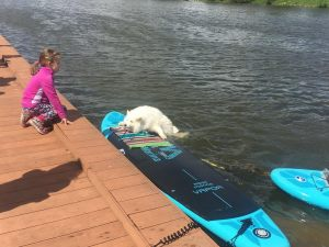 dogsurfparty201824